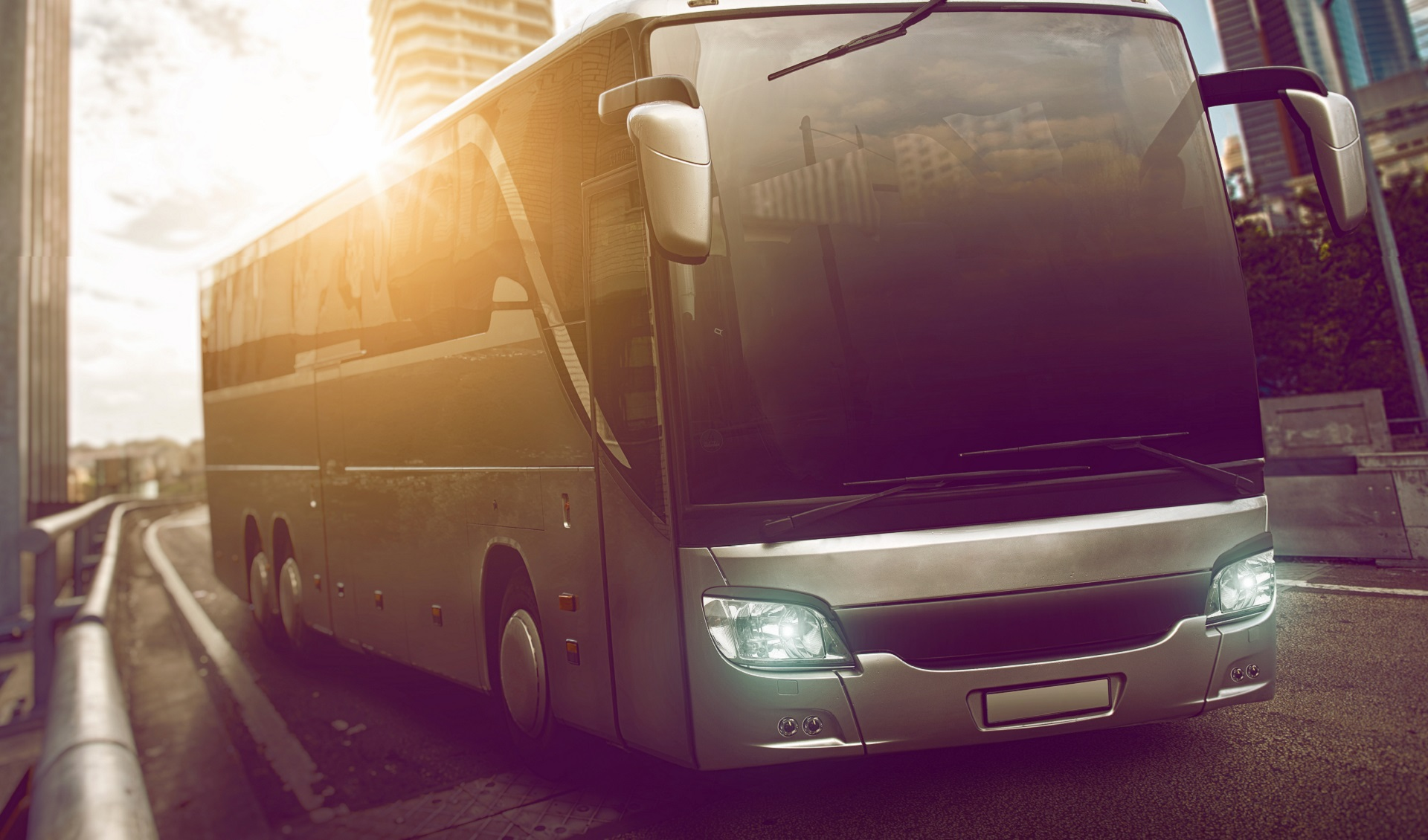 Chartered Tours